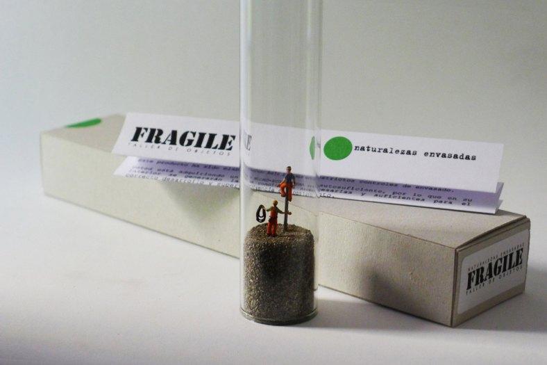 FRAGILEtaller